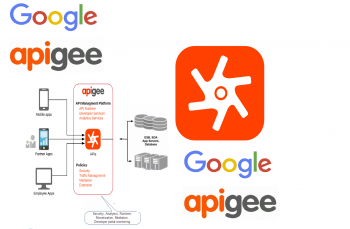 Become Apigee API Management Guru