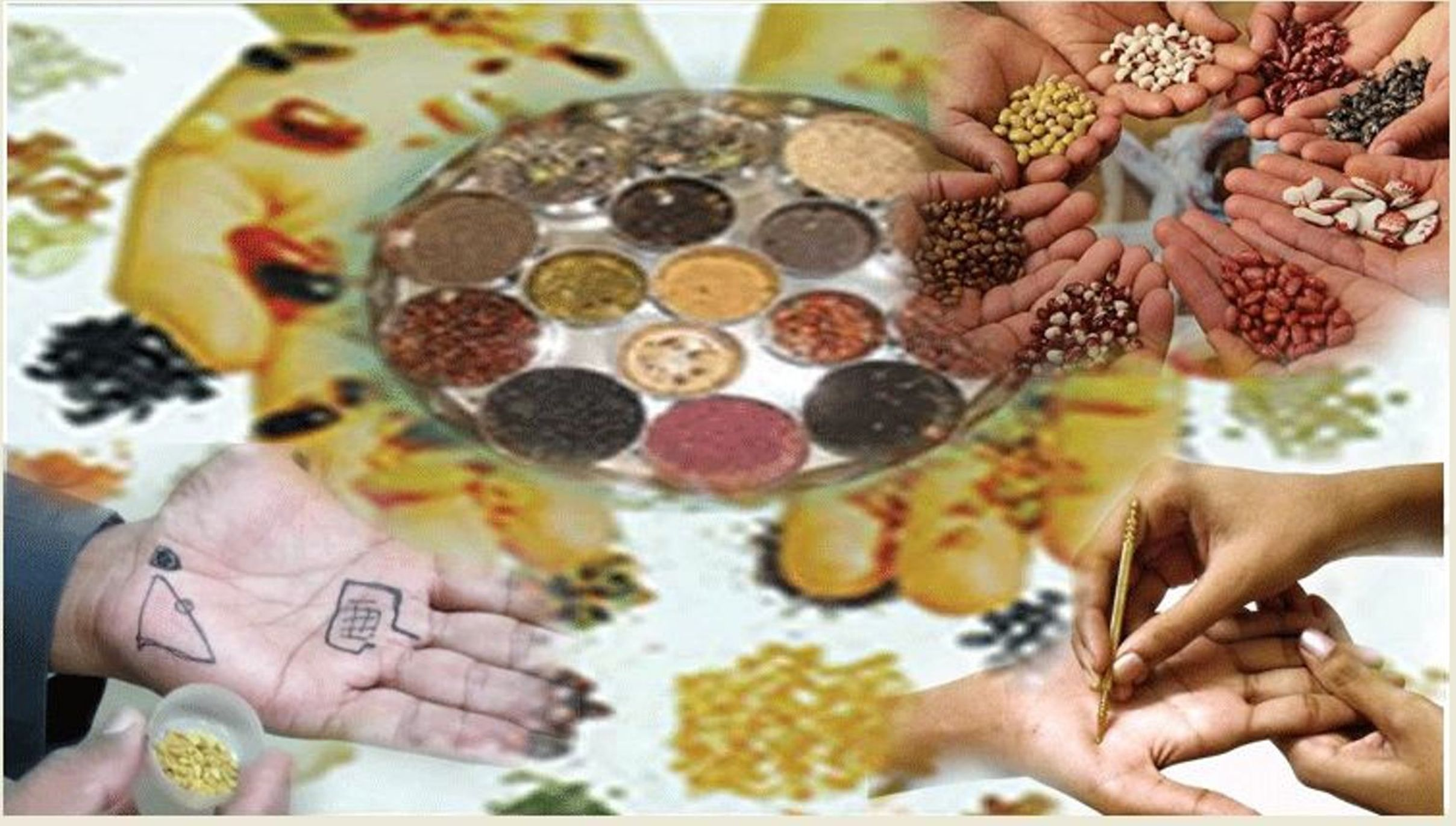 Sujok Seed Therapy Online Free Class PDF Book Download